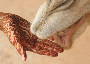 Mehndi_on_hand_with_camel