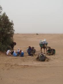 trektocht - woestijn - kamelen
